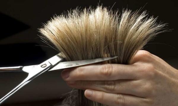 hair-faster-photo-3