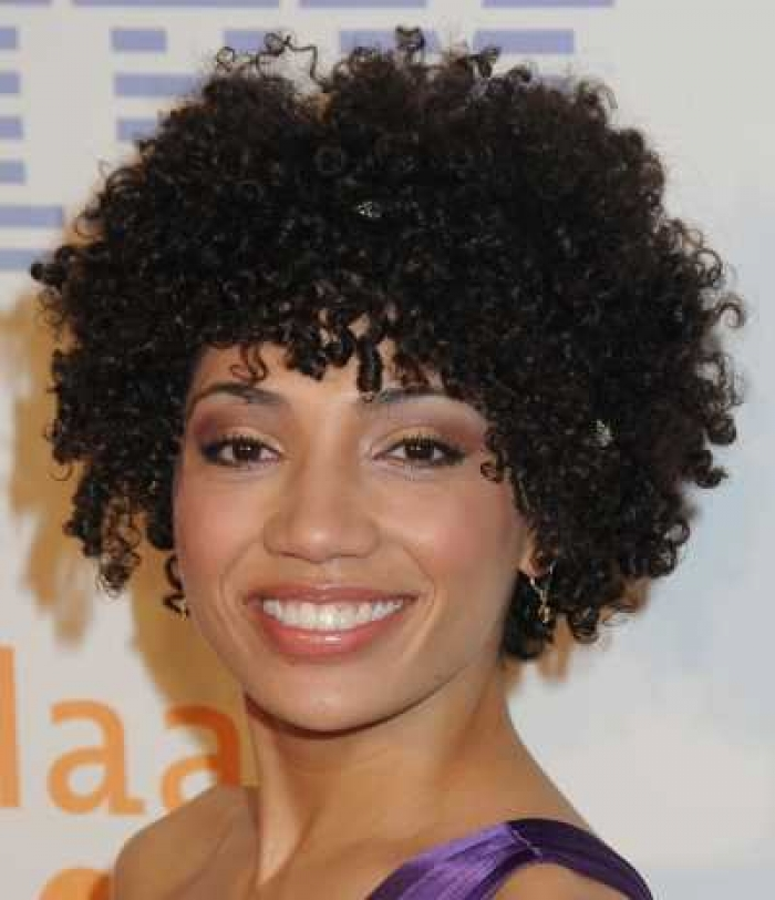 23 Nice Short Curly Hairstyles for Black Women – HairStyles for Woman