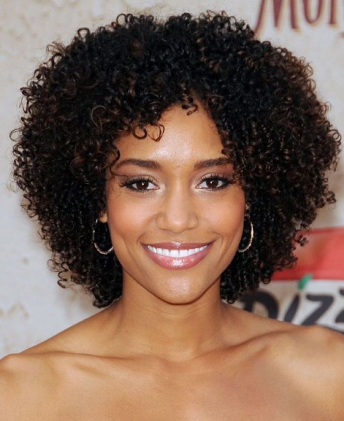 styles for black curly hair 23 curly hairstyles for black 6103
