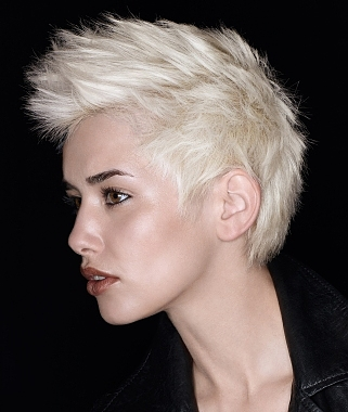 mohawk hairstyles photo - 1