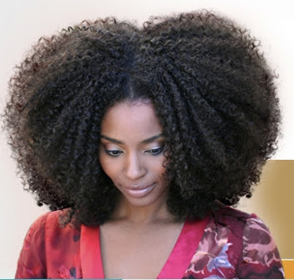 natural hairstyles for short kinky hair photo - 7