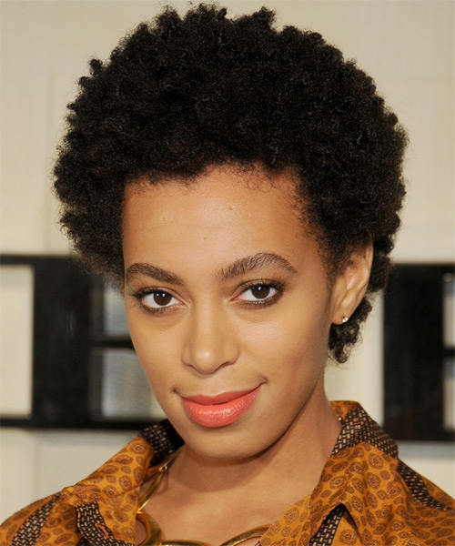 short black natural curly hairstyles photo - 2