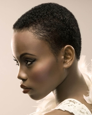short natural african american hairstyles photo - 1