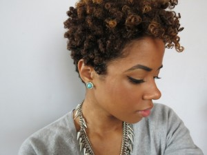 short natural afro hairstyles photo - 6
